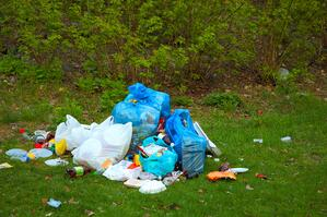 Rubbish dumped in a park